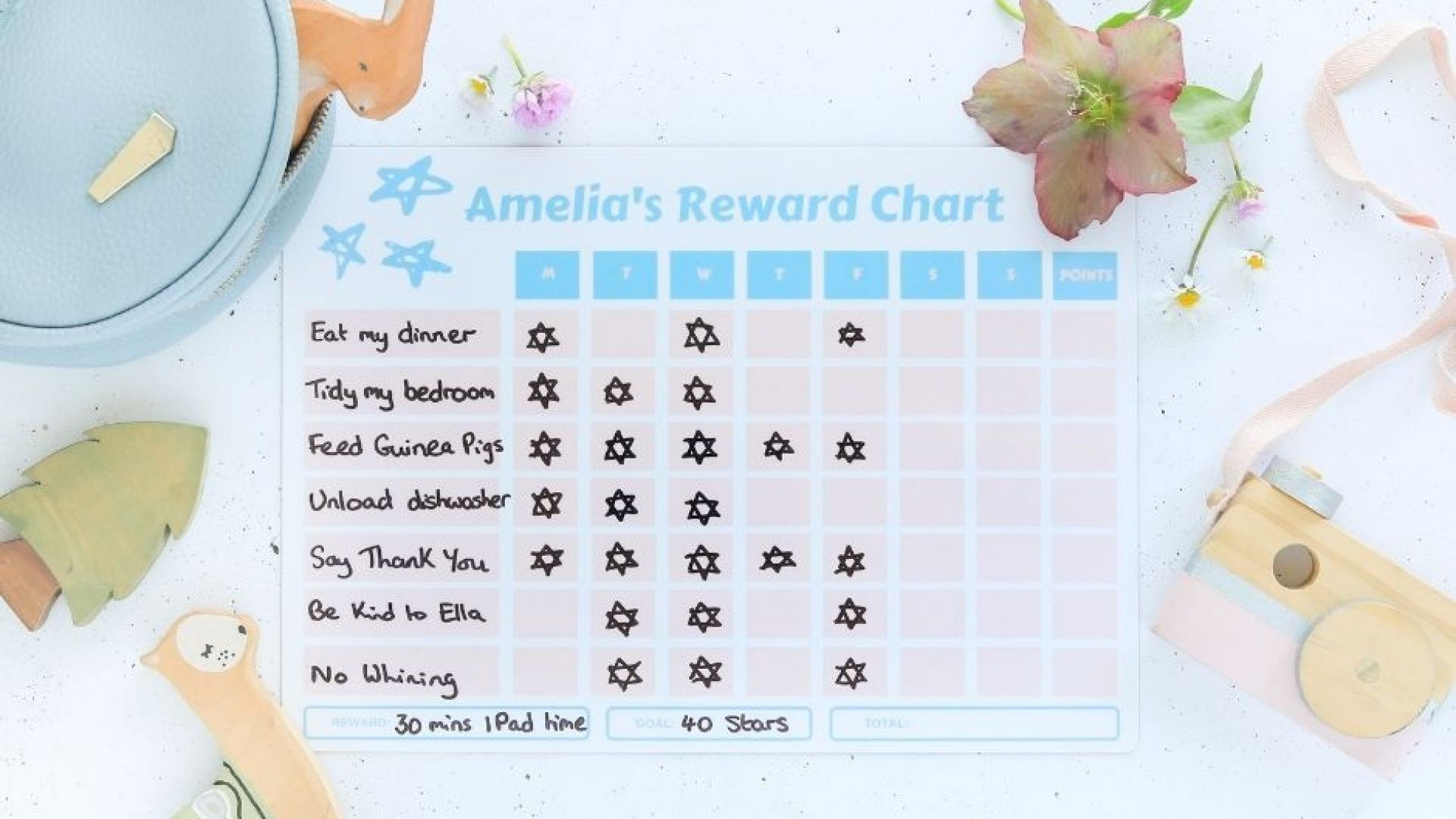 Do Reward Charts Work?